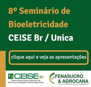 Seminário sobre Bioeletricidade