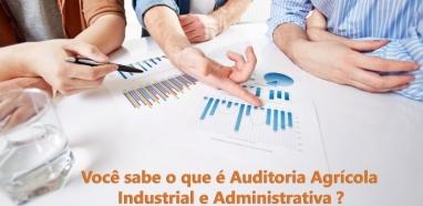 O que é Auditoria Agrícola Industrial e Administrativa?