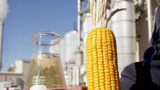 Com investimento estrangeiro, Mato Grosso será pioneiro no país em produção de etanol de milho