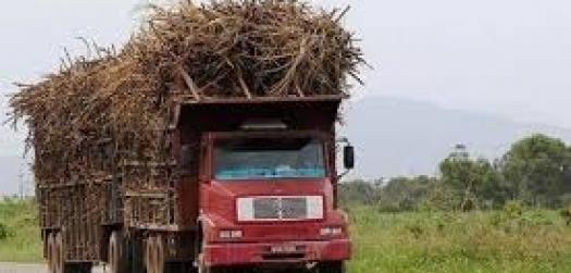 Nova resolução do Contran busca segurança no transporte da cana no Brasil