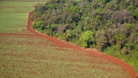 Novo Protocolo Agroambiental será assinado no Ethanol Summit