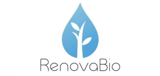 RenovaBio deve ir para o Congresso em outubro, diz setor de biodiesel
