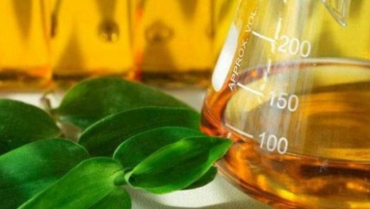 China deve expandir produção e consumo de bioetanol