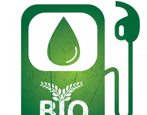 Pesquisador piauiense inova na produção de biocombustível