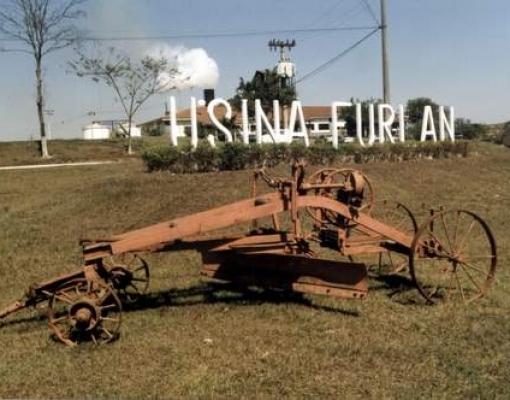 Raízen e São Martinho compram canaviais da usina Furlan