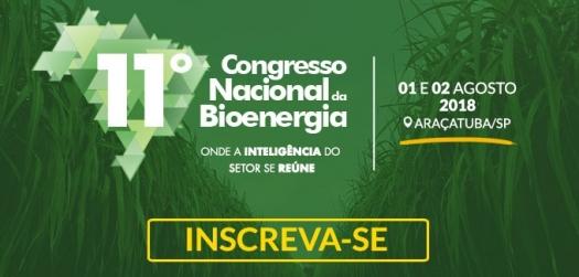 RenovaBio trará meritocracia no setor de biocombustíveis