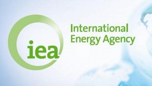 Futuro da economia global é elétrico, mas poluído, afirma AIE