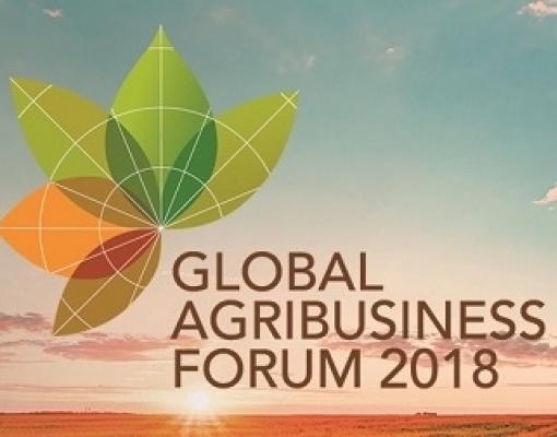 Milho também estará no centro dos debates na quarta do Global Agribusiness Forum