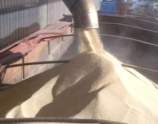 Estoque de etanol maior no Brasil pode trazer açúcar de volta