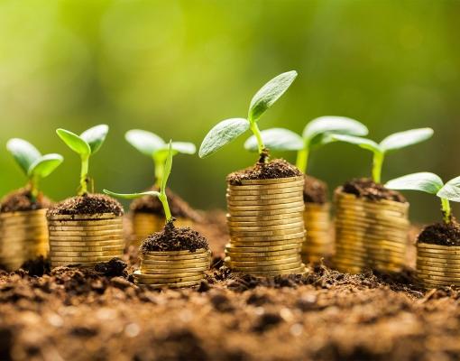 Contratação de crédito agrícola no Brasil cresce 48% em julho, diz ministério