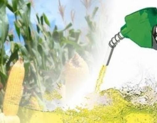 Potencial de etanol de milho no Brasil