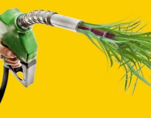 Etanol amplia vantagem sobre a gasolina em setembro