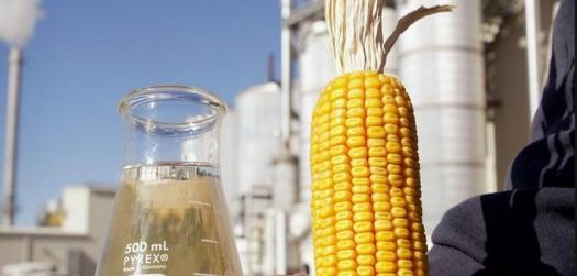 Cresce interesse de investidores para usinas de etanol de milho