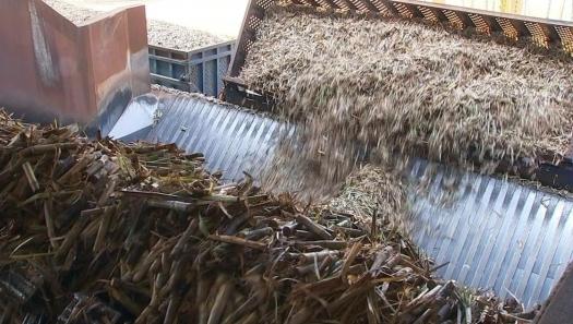 Usinas antecipam fim da moagem de cana no Centro-Sul