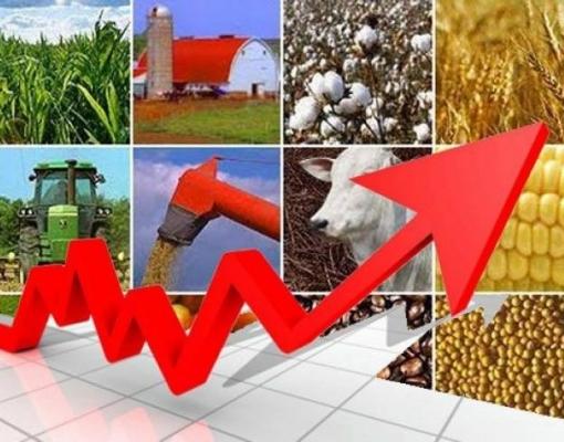 PIB do agro cresceu 2,5% no 3º trimestre na comparação com igual período de 2017