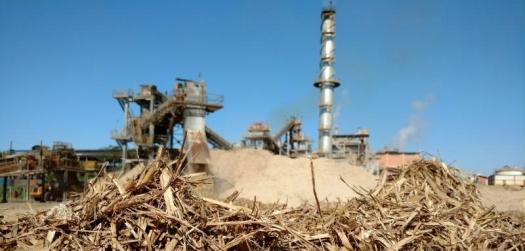 Cogeração de energia via biomassa de cana pode crescer 57% até 2030