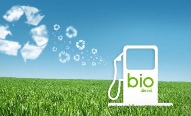 Projeto no Paraguai incentiva biodiesel