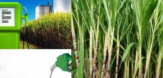 Altas na gasolina e economia impulsionam perspectivas para etanol perto de safra