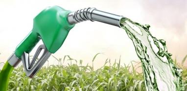 Estoques elevados mantêm etanol competitivo em plena entressafra