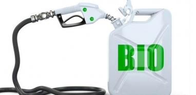 Demanda por biocombustíveis seguirá em alta