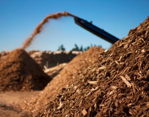 Resultado de imagem para biomassa