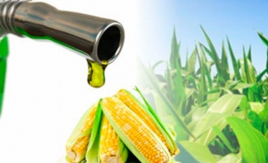 Conab divulga pela primeira vez dados sobre a produção de etanol de milho
