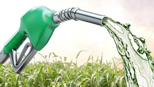 Demanda por etanol no Brasil limita produção de açúcar