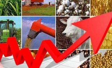 Boas expectativas para o agronegócio