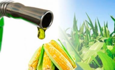 Etanol a partir do milho