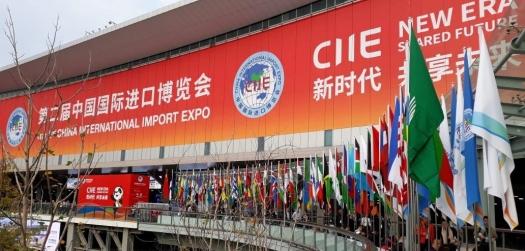 Indústria de base é representada na China International Import Expo 2019