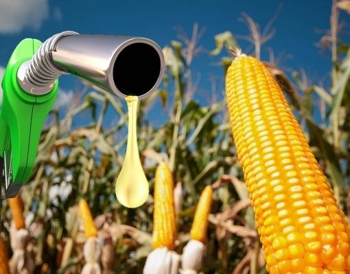 Produção de etanol de milho do Brasil deve saltar 86% em 2020/21, afirma Unem