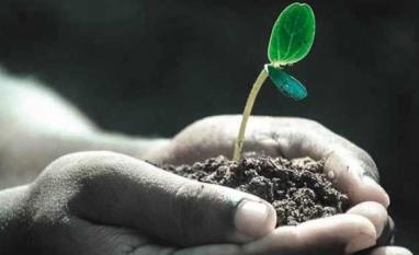 RenovaBio, a nova energia renovável do Agro