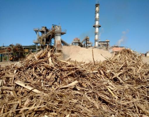 Produção de eletricidade da cana avança 4% e abastece 12 milhões de residências