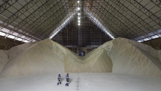 Brasil deve produzir mais açúcar com queda do petróleo, diz executivo da Raízen