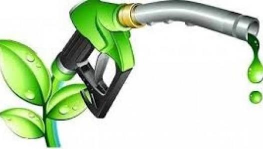 ANP inicia consulta sobre Diesel Verde