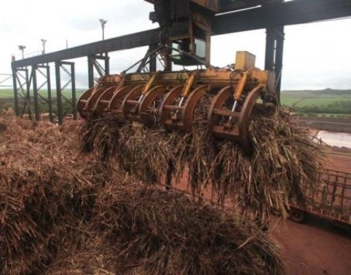 Usinas do País antecipam moagem de cana e devem produzir mais açúcar, diz FCStone