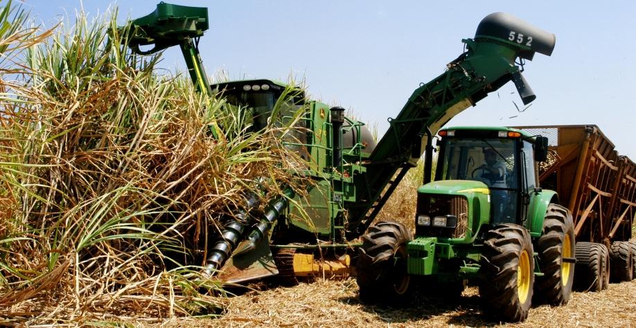 Estudos comprovam que em decorrência do crescimento da área e produção de cana é mais viável economicamente colher e matéria-prima de forma plenamente mecanizada.