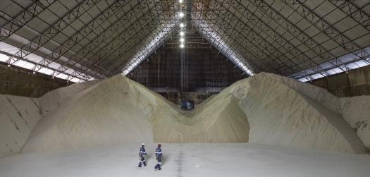 Maior trading de açúcar vê produção brasileira perto de recorde