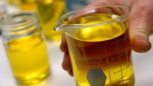 Aumento da mistura de biodiesel pode sustentar produção do Brasil, diz Abiove
