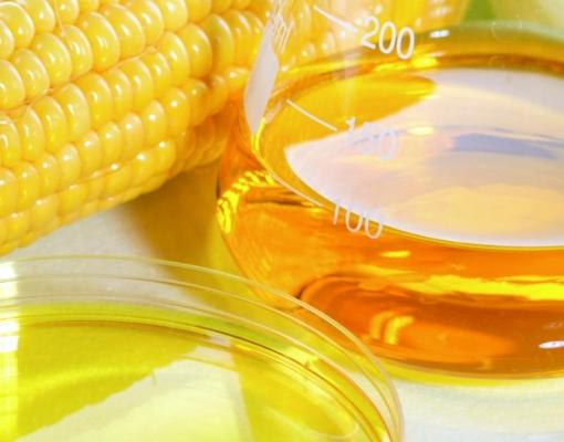 Nortão: produtores planejam construir usina de etanol e investir R$ 652 milhões
