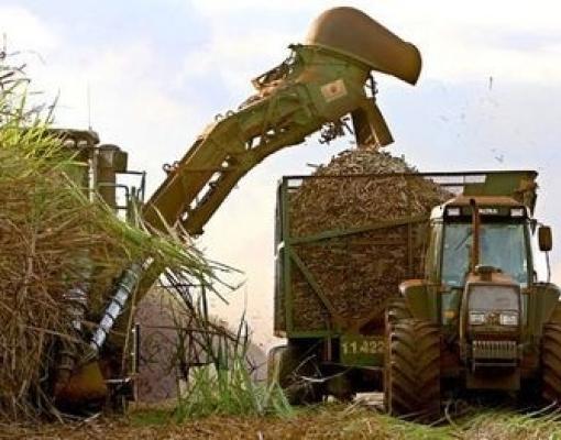 Açúcar e etanol: para onde vão os preços na segunda metade da safra atual?