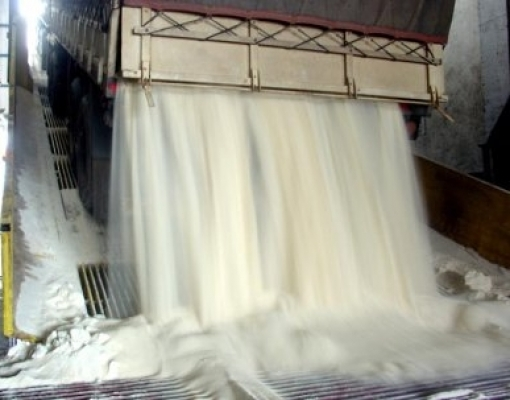 DATAGRO prevê moagem de 630 milhões de toneladas para safra 21/22