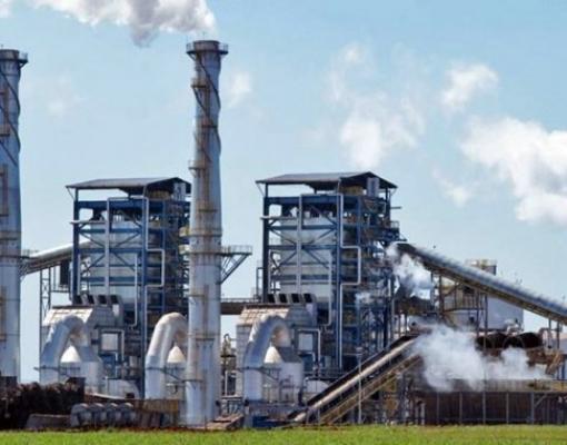 Usinas de açúcar da Índia planejam outro ano de vendas recordes