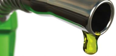 Governo Federal regulamenta Selo Biodiesel Social