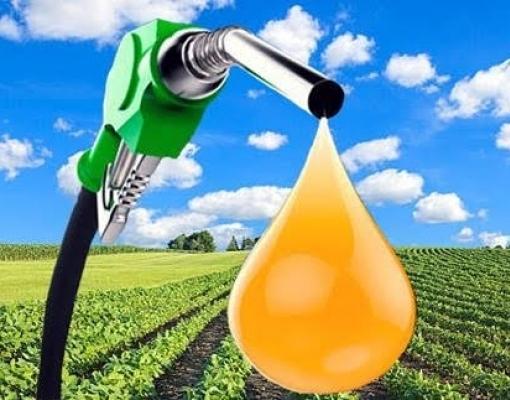 MME alcança diversas realizações no setor de biocombustíveis em 2020