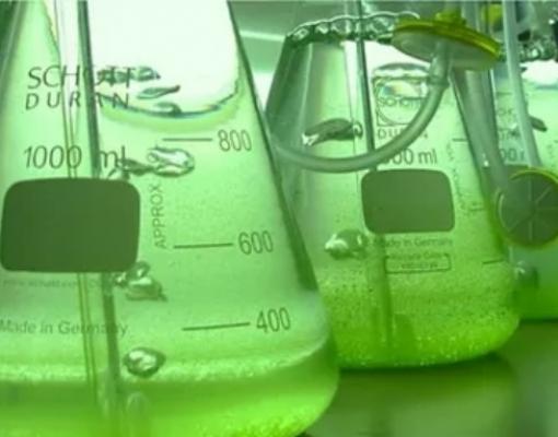 Montadoras elegem o etanol como fonte para a tecnologia de motores elétricos